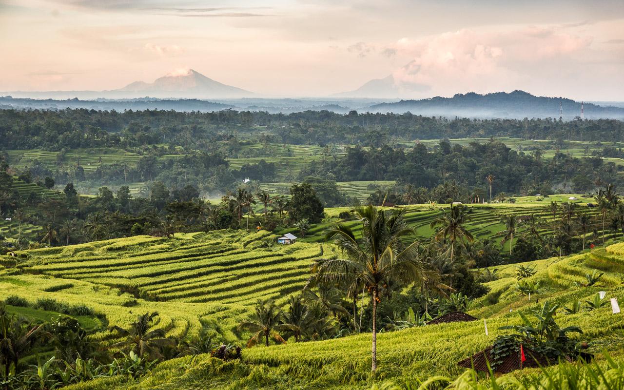 Indonesia-Bali-2016-_MG_8287