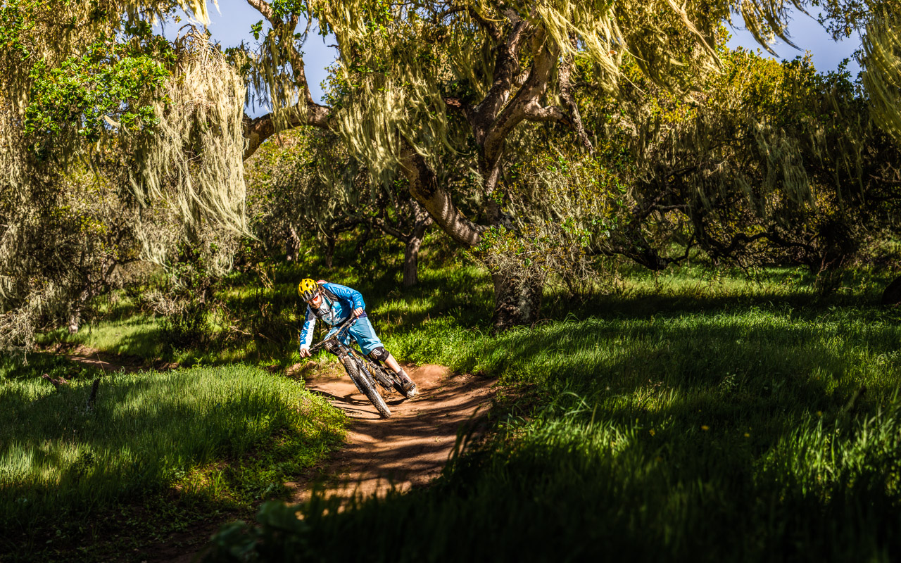 MTB-News-California-USA-2013-fort_ord_forest_10